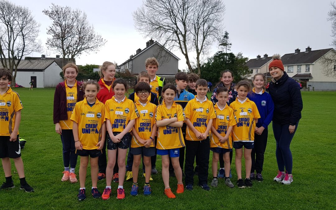 Allianz Cumann na Bunscoil Cross Country