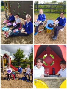 Room 11 Class Outing to Cappagh Park